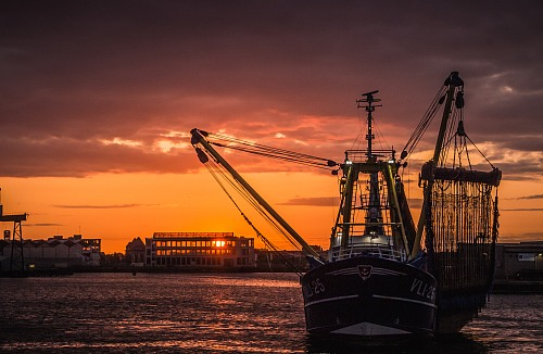 Vlissingen Fishingvessel leaving the port of Vlissingen<br /> Fishermen / fishing boats / fishing equipment Robin Hardeman